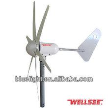 Wind power electric generating system WS-WT300W Wellsee wind power generators 6 blades