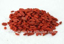 Chinese goji berries wolfberry herb medicine