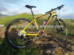 Special Carbon Mountain Bike,Mountain Bike 29er,Carbon Mountain Bike