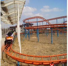 cheap roller coaster for sale