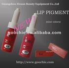 Cosmetic Permanent Makeup&Tattoo Pigment