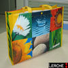 2012 Fashion Non woven Promotional bags