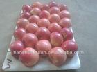 plastic bag fuji apple