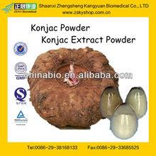 GMP Certified Manufacturer Supply Natural Konjac Powder
