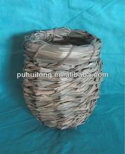 weaving bird nest