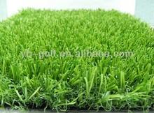 PGM Outdoor Lawn Grass