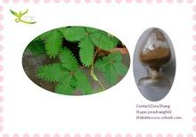 100% Natural Sensitive Plant Extract/Mimosa tenuiflora P.E with mimosine