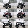 125CC 150CC ATV HUNTER 125CC 150CC QUAD ATV 4 Wheeler Buggy Farm ATV QWMOTO