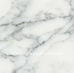 Italian import white carrara marble