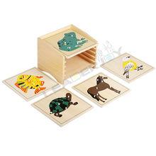 Premium Montessori materials