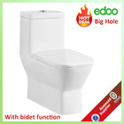 Hot-sale Middle East & Indian exclusive design square toilet bowl S-trap 225mm/250mm 4 inch outlet washdown one piece toilet