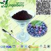 Wholesale China wild Blueberry extract Pterostilbene 20% anti-cancer