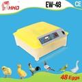 Caliente la venta de la alta tasa de eclosión de huevos automático Fertilized pollo huevos para incubar de venta para 48 huevos