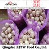 2014 natural garlic from shandong province