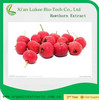 hot sale Hawthorn Fruit P.E.
