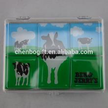 Custom your design magnetic epoxy fridge magnet / epoxy magnet set in a plastic box