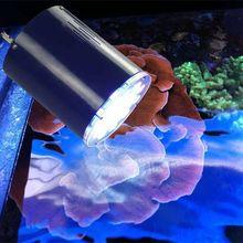 Lumini Aqua fish aquarium