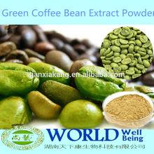 China fábrica gmp pure 100% natural perca peso 50% de ácido clorogênico cápsula puro pó de café verde feijão de café verde extrato