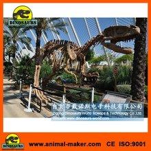 Display hall Dinosaurs Skeleton Replica Art Children Toys
