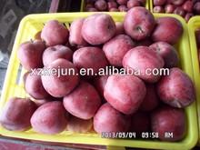 Fresh natural red Huaniu apple