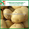 fresca patata dolce