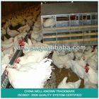 9KLK-36 Breeder Chicken Chain Feeding System