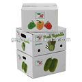 Eco amigable cajas cartón onduladas empaquetamiento vegetales frutas