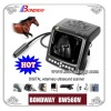 Equine/Horse Veterinary Ultrasound machine BW560V