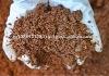 Best soil nutrient enhancer
