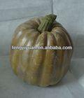 Hot sell Trendy green decorative pumpkins