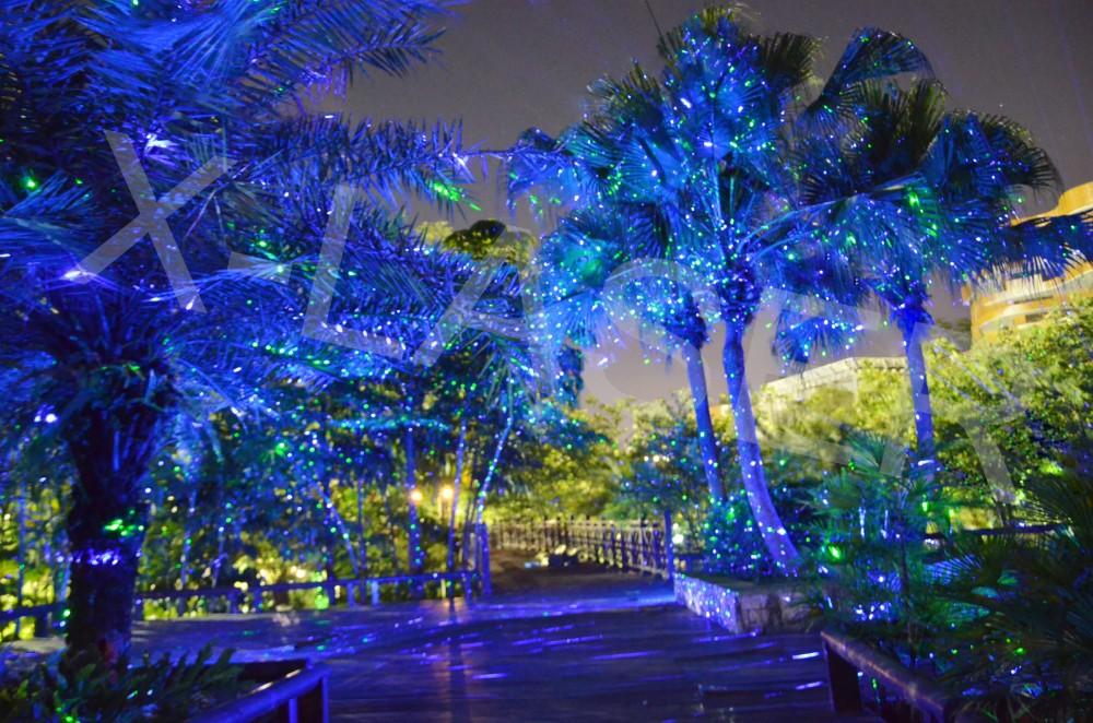 laser light for outdoor decoration projector elf light. Black Bedroom Furniture Sets. Home Design Ideas