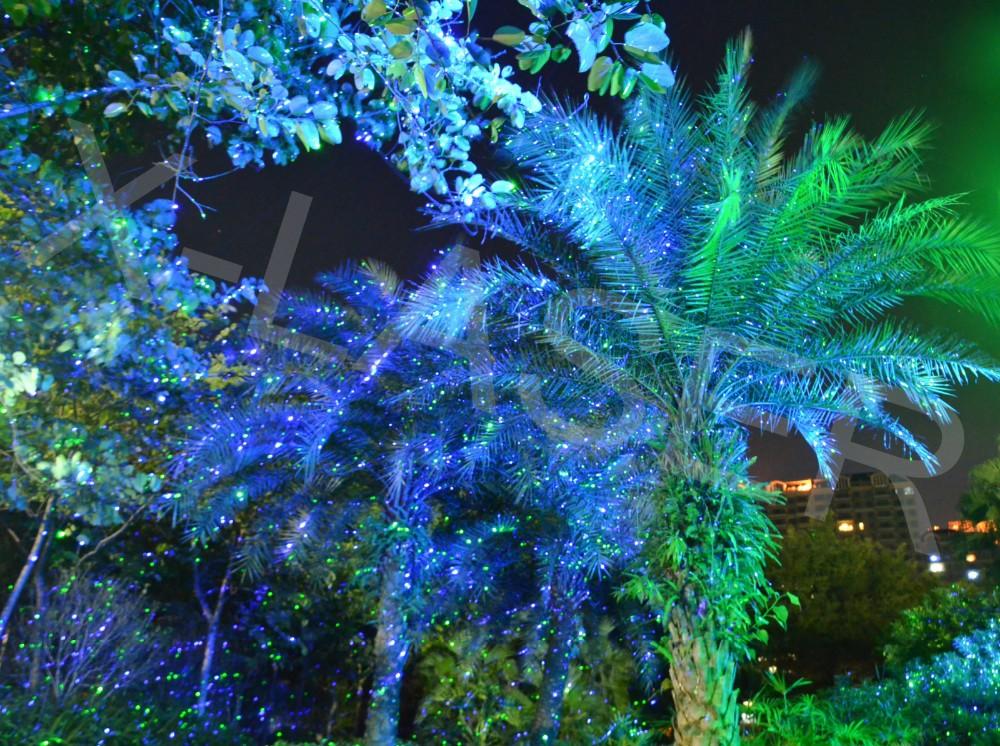 Christmas Elf Lights
