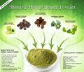 natural herbal henné en 100 gr argent et sachets de couleur