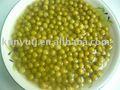 Suministro de conservas de guisantes verdes con& seco materiales frescos de buena calidad