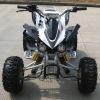 /product-gs/110cc-quad-293336181.html