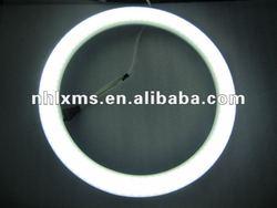 led ring light G10q 16w-17w 300*29mm