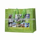 Biodegradable Plastic Shopper Collapsible Bag