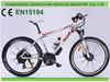 high quality Mountain Fashion Electric bike with EN15194