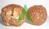 Wild Organic Bulk Soap Nuts Supply