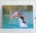Lovely dauphin. photos toile