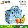 Picnic High Quality Kid Cooler Bag DK-LB373