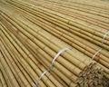 Palos de bambú