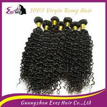Most popular xbl hair virgin kinky curly hair for sale