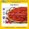 New Harvest, Top Quality Goji Dried Fruit