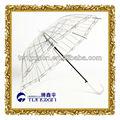 fancy design parapluie poe