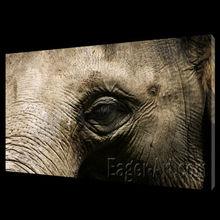 Customized canvas print pictures Wild Animal Elephant