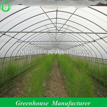 Uv Film Single Span Greenhouse for Agriculture