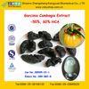 GMP Manufacturer Supply 100% Natural Garcinia Cambogia Supplement