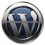 WordPress customization development services
