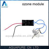 YOUMO AQUAPURE 200mg/h Stainless Steel Small Ozone Generator Module